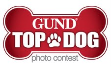 Inspired By Savannah Gund 174 Top Dog Photo Contest