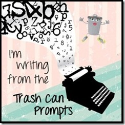 writingfromthetrashcanimage_thumb_thumb