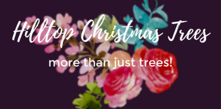 Hilltop Christmas Trees