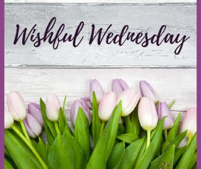 wishful wednesday featured