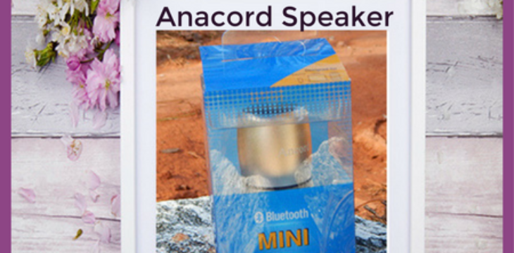 ancord speaker review