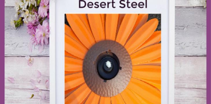desert steel review
