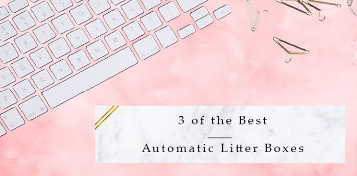 3 of the Best Automatic Litter Boxes for Cats in 2017