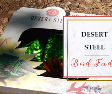 desert steel bird feeder featured