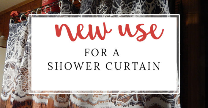 A Different Use for a Shower Curtain